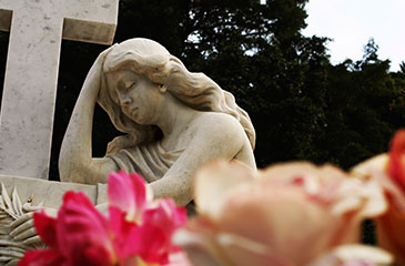 Survival Tips for Grief