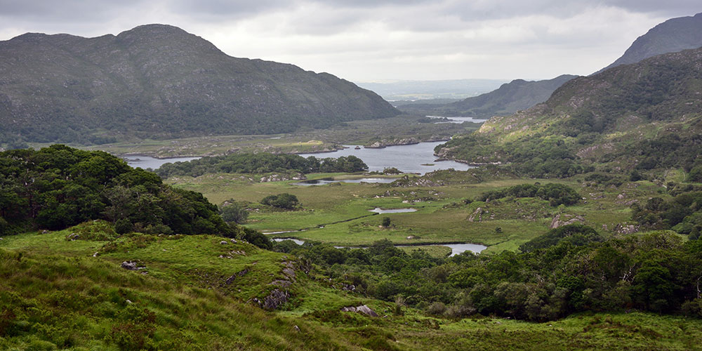 Irish Wakes, Poems and Prayers