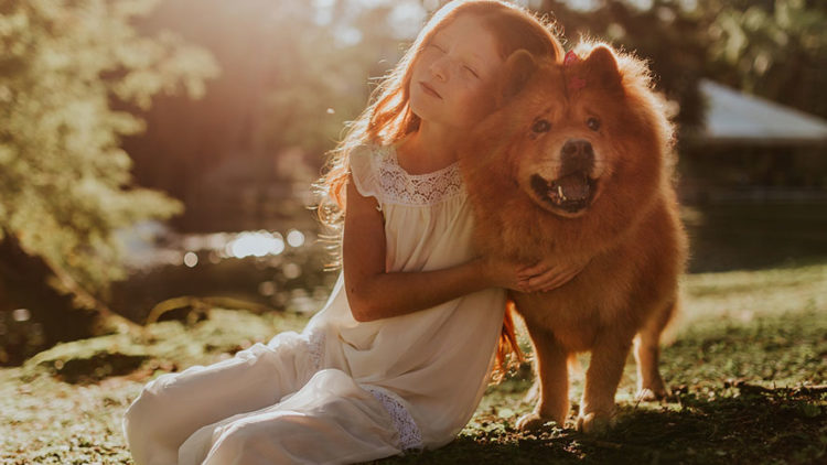 Helping Children Grieve a Family Pet