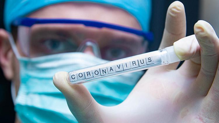 Corona Virus Grief Resources